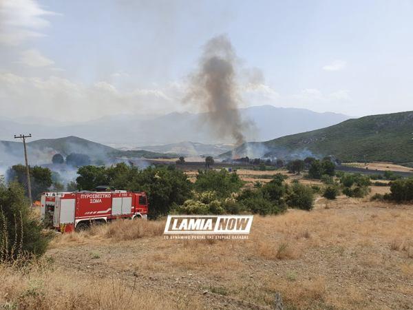 Μεγάλη φωτιά στη Φθιώτιδα - Εκκενώνεται η Δίβρη