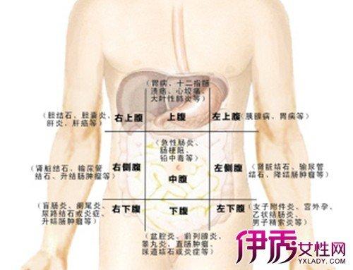 肚子左側痛是怎麼回事 盤點各種可能的原因 - 壹讀
