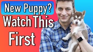 Download Everything you Need to be Prepared for your New Puppy! Video