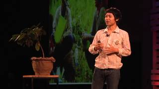 Download Journey to Akha Ama Coffee: Lee Ayu Chuepa at TEDxChiangMai 2013 Video