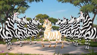 Download The Golden Zebra Video