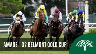 Download Amade - 2019 - The Belmont Gold Cup Invitational Stakes Video