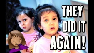 Download OOPS! THEY DID IT AGAIN! - January 11, 2018 - ItsJudysLife Vlogs Video