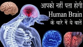 Download Most Amazing Facts About Human Brain Part 2 , (Hindi) Video