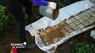 Download Construire une allée au sec dans son jardin - Silence, ça pousse ! Video