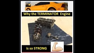 Download Why is the 03/04 Terminator Cobra Engine so STRONG? Internals exposed Video