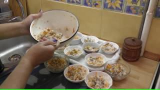 Download Чем кормить йоркширского терьера - видео обзор Светланы Пискун Video