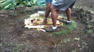 Download Kalua Pig Mini Imu.wmv Video