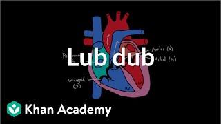 Download Lub Dub   Circulatory system physiology   NCLEX-RN   Khan Academy Video