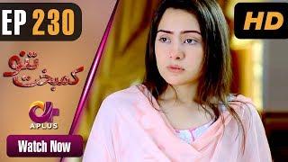 Download Drama   Kambakht Tanno - Episode 230   Aplus ᴴᴰ Dramas   Tanvir Jamal, Sadaf Ashaan Video