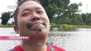 Download 【台北台中】花錢也買不到的好水 在台灣的故事 第894集 Video