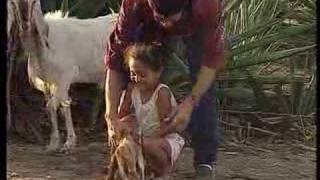 Download Hazardous Child Labour in Agriculture Video