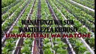 Download UMWAGILIAJI WA MATONE Video