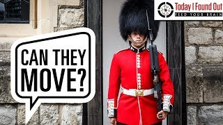 Download Can the Queen's Guard Really Not React to People While on Duty? Video