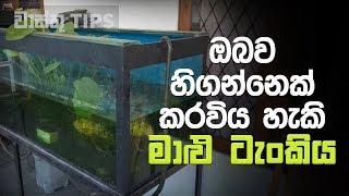 Download නිවසේ ඇති මාළු ටැංකියට ඔබව හිගන්නෙක් කල හැකි බව ඔබ දන්නවද..?   Vastu Tips for Fish Aquarium in Home Video