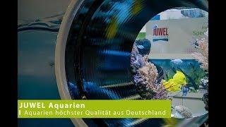 Download JUWEL Aquarium - Interzoo 2018 Video
