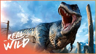 Download The Greatest Dinosaur Find Ever! It's A Dinosaur Attack! | Wild Things Documentary Video