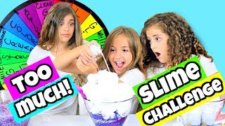 Download Mystery Wheel of Adding Too Much of Everything Slime Challenge!! Video