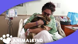 Download This is not your typical therapy animal Video
