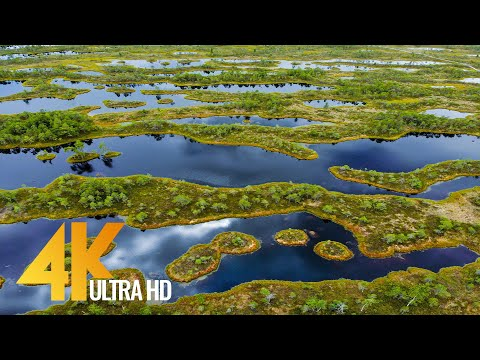 Bird's Eye View of Lithuania - 4K Relaxing Aerial Film with Soothing Music