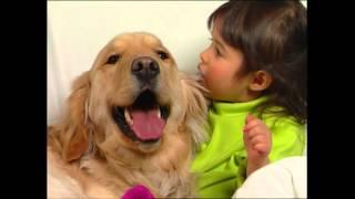 Download Baby Dolittle: Neighborhood Animals, Part 1 | Animal Videos for Kids | Baby Einstein Video