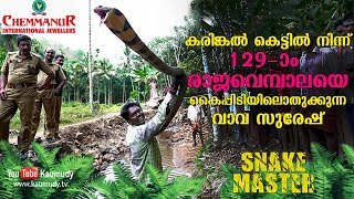 Download WOW! Vava Suresh rescues his 129th King Cobra from a stone quarry | Snakemaster | Latest Episode Video