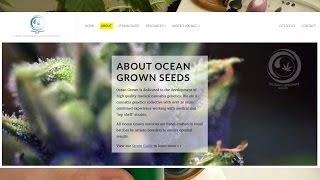 Download Ocean Grown Seeds, Thank You! Video