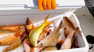 Download Fishing for Christmas Dinner in the Bahamas using Hand Lines - 4K Video