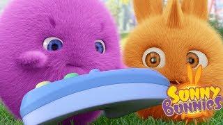 Download Cartoons for Children | Sunny Bunnies SUNNY BUNNIES VIDEO GAME | Funny Cartoons For Children Video