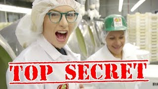 Download HOW BEAN BOOZLED IS MADE! Video
