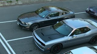Download The best drag races of modern muscle cars-ZL1 vs Hellcat vs Shelby vs Boss 302 vs Mustang GT Video