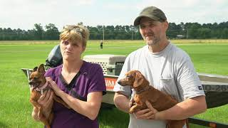 Download Flood Victims Reunite With Pets Video