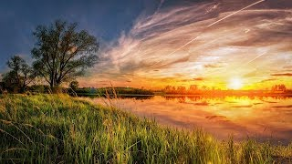 Download GOOD MORNING MUSIC ➤ 528 Hz Positive Energy ➤ Start Your Day With Positivity | Beautiful Morning Video