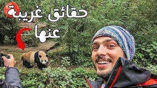 Download 🐼 زيارتي لمحمية دب الباندا وحقائق غريبة عنها Video