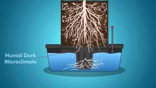 Download Octpot Grow System | How Octopots Work Video