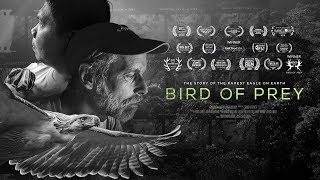 Download Bird Of Prey Movie: Trailer Video
