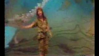 Download Rita Lee - Baila comigo (RAI TV 1984) Video
