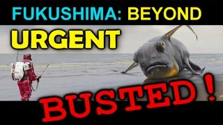 Download Fukushima: BEYOND URGENT... BUSTED! Video