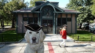 Download The Best Way To Do The Freedom Trail in Boston Video