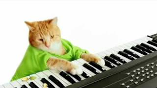 Download Keyboard Cat's Wonderful Pistachios Commercial! Video