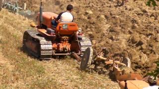 Download Spettacolare aratura di gruppo con trattori cingolati Fiat Video
