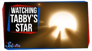Download Why Everyone Was Watching Tabby's Star Last Weekend Video