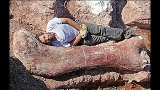 Download BIGGEST Fossil Finds in History Video