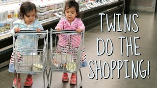 Download TWINS DO THE SHOPPING! - August 18, 2016 - ItsJudysLife Vlogs Video