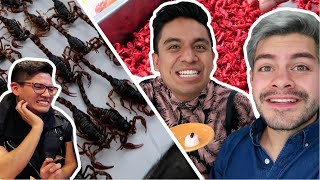 Download COMIENDO BICHOS RAROS en MEXICO con Pepe & Teo !!! Video