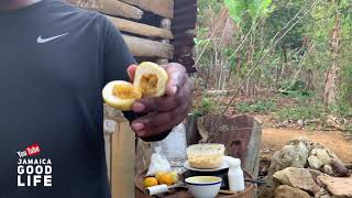 Download JAMAICA GOOD LIFE - EP325 - S2, Rondie Makes Banana Fritters with Passion Fruit Video