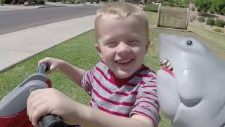 Download Killer Bees the Second Swarm! Jaws Shark and Cole get Chased by Bee Swarm. Video