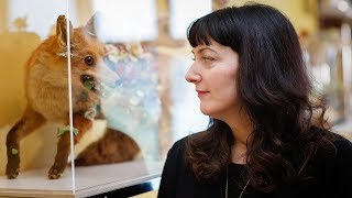 Download 'It's our entire relationship with animals': Angela Singer on her art and taxidermy Video