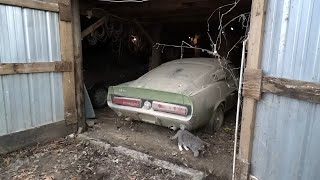 Download 1967 Shelby GT500 Barn Find and Appraisal That Buyer Uses To Pay Widow - Price Revealed Video