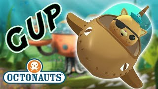 Download Octonauts - The GUPS Close Up | Cartoons for Kids | Underwater Sea Education Video